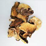 業務用低温乾燥椎茸(だし用)1kg