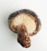 冷凍熟成椎茸(Mサイズ:4.5㎝~5.5㎝)